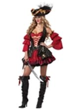 Picture for category Pirate Costumes