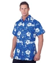 Picture for category Luau Costumes