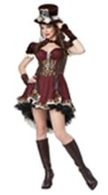 Picture for category Steampunk Costumes