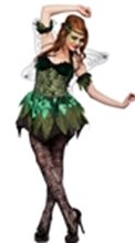 Picture for category Fairy Costumes