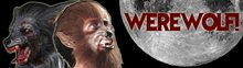 Picture for category Babies, Kids & Youth Werewolf Costumes