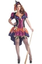 Picture for category Sexy Plus Size Costumes