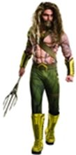 Picture for category Aquaman Costumes