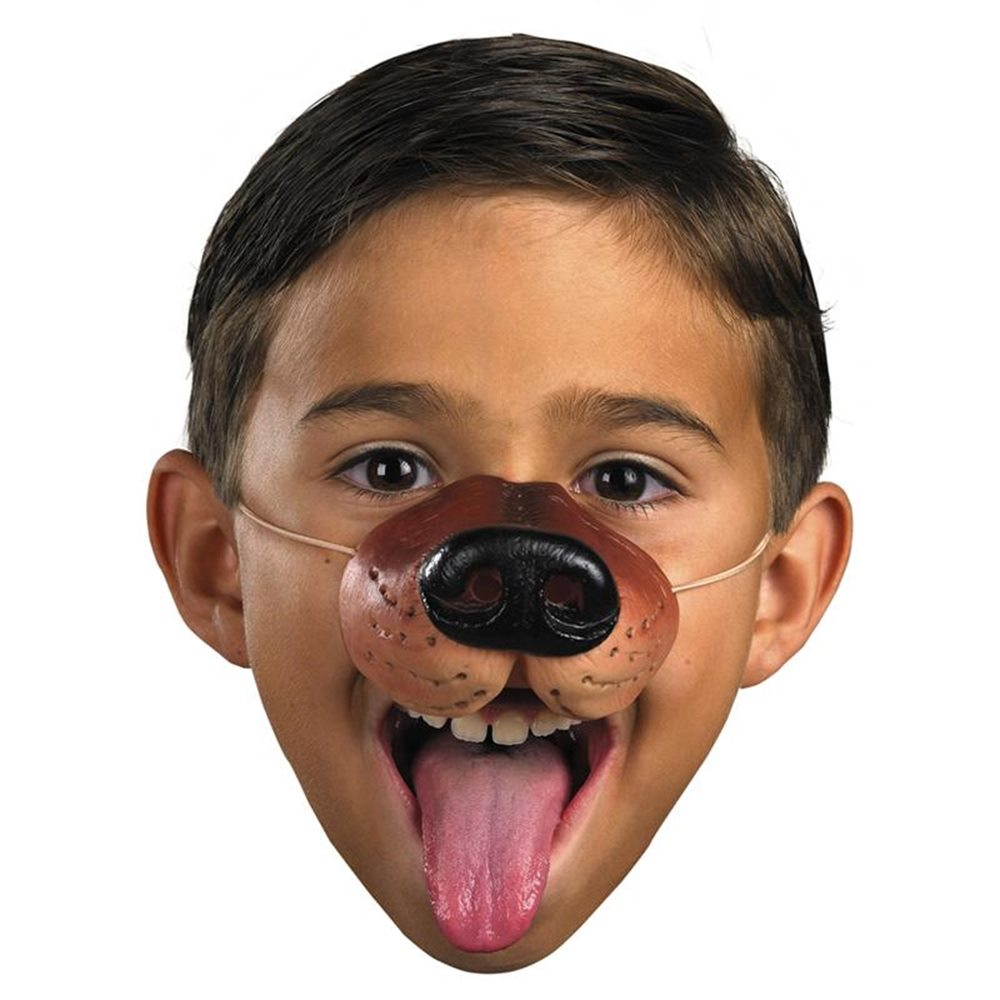 Picture of Nose'N Around Dog Nose