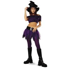 Picture of Wicked Witch Adult Womens Costume