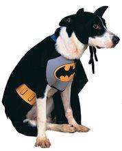 Picture of Batman Dog Costume