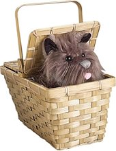 Picture of Deluxe Toto in a Basket