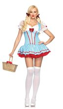 Picture of Dorothy Diva Costume