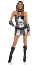 Picture of Knight of Honor Adult Womens Costume