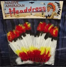 Picture of Native American Headdress