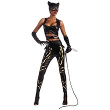 Picture of Deluxe Catwoman Adult Womens Costume