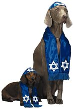 Picture of Pup Shalom Pet Costume