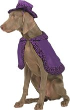 Picture of Big Daddy Purple Pet Costume
