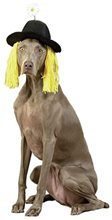 Picture of Daisy Derby Hat with Hair Pet Costume