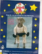 Picture of Muscle Bound Hound Pet Costume