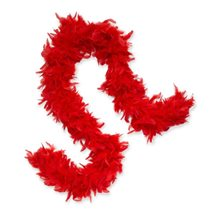 Picture of Red Feather Boa