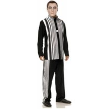 Picture of The Big Bang Theory Sheldon's Doppler Effect Adult Mens Costume