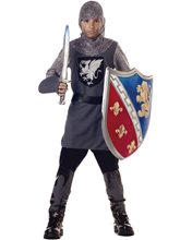 Picture of Valiant Knight Child Costume