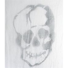 Picture of Large Skull on Freaky Fabric