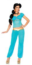 Picture of Jasmine Adult Womens Costume