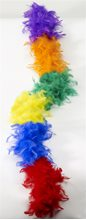 Picture of Rainbow Feathered Boa