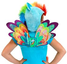 Picture of My Little Pony Rainbow Dash Wings
