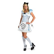 Picture of Alice in Wonderland Adult Womens Costume