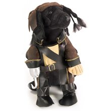 Picture of Pirate King Pet Costume