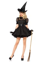 Picture of Bewitching Witch Adult Womens Costume