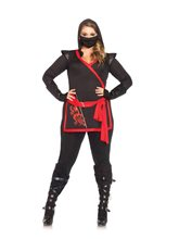 Picture of Sexy Ninja Assassin Adult Womens Plus Size Costume