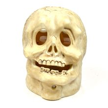 Picture of Animated Skull Morphkin Prop