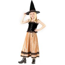 Picture of Elegant Witch Child Costume