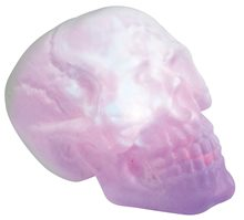 Picture of Fire & Ice Giant Skull