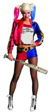Picture of Suicide Squad Harley Quinn Inflatable Bat
