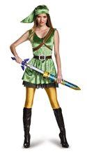 Picture of Zelda Link Dress Teen Costume