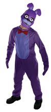 Picture of Five Nights at Freddy's Bonnie Child Costume
