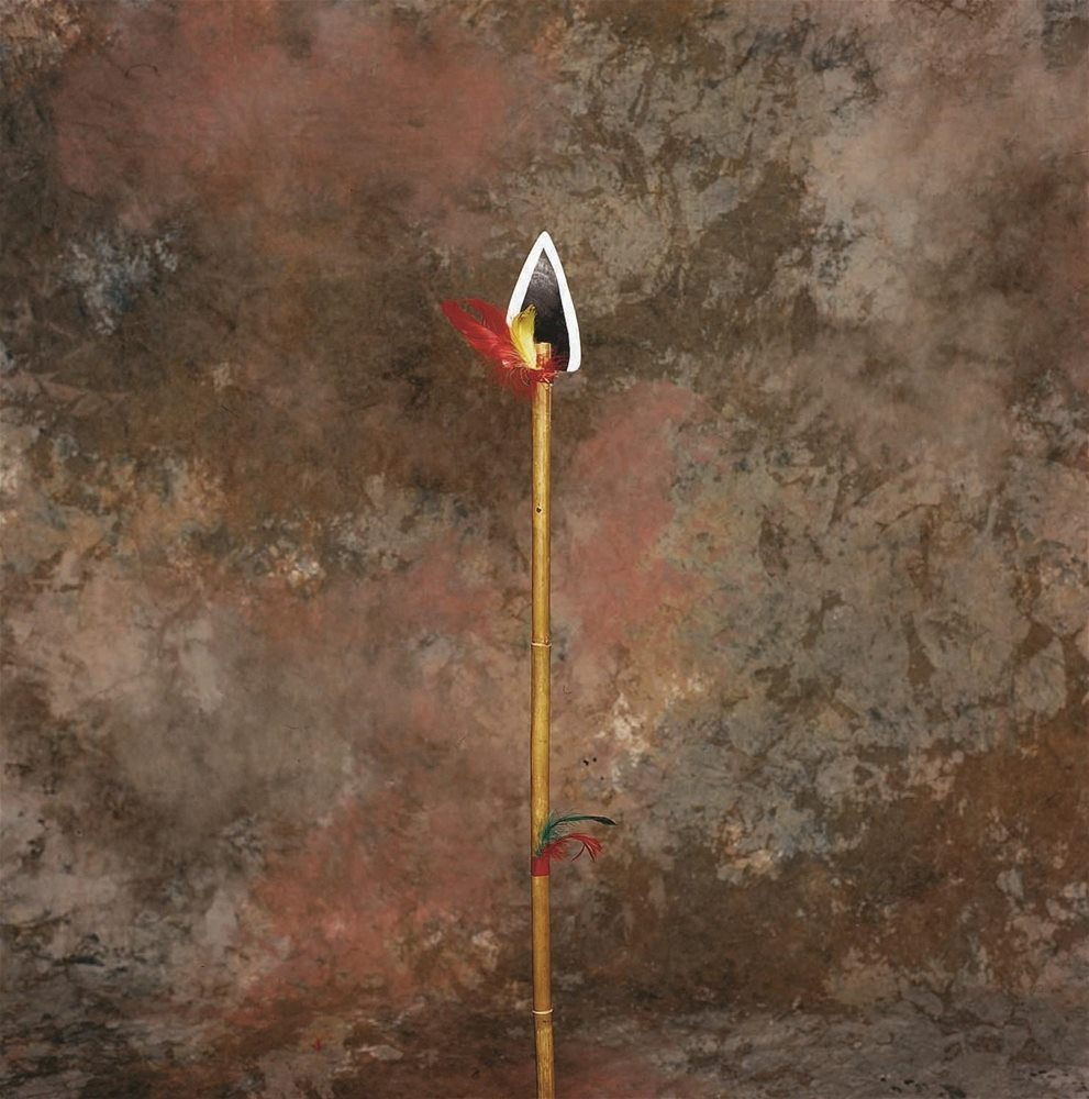 Picture of Indian Spear 39in