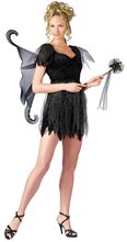 Picture of Midnite Fairy Teen Costume
