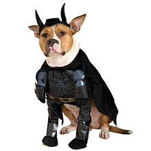 Picture of Batman Dark Knight Pet Costume