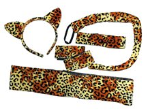 Picture of Sexy Leopard Adult Accessory Set