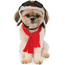 Picture of Aviator Pet Costume