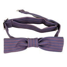 Picture of Newt Scamander Bow Tie