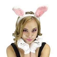 Picture of Bunny Ears & Makeup Set