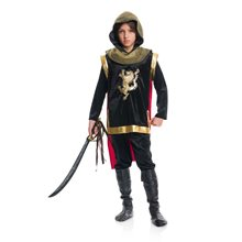 Picture of Glorious Knight Child Costume