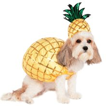 Picture of Pineapple Pup Pet Costume (Coming Soon)