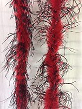 Picture of Red & Black Ostrich Feather Boa