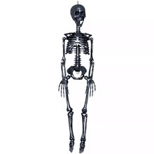 Picture of Black Realistic Plastic Skeleton 3ft
