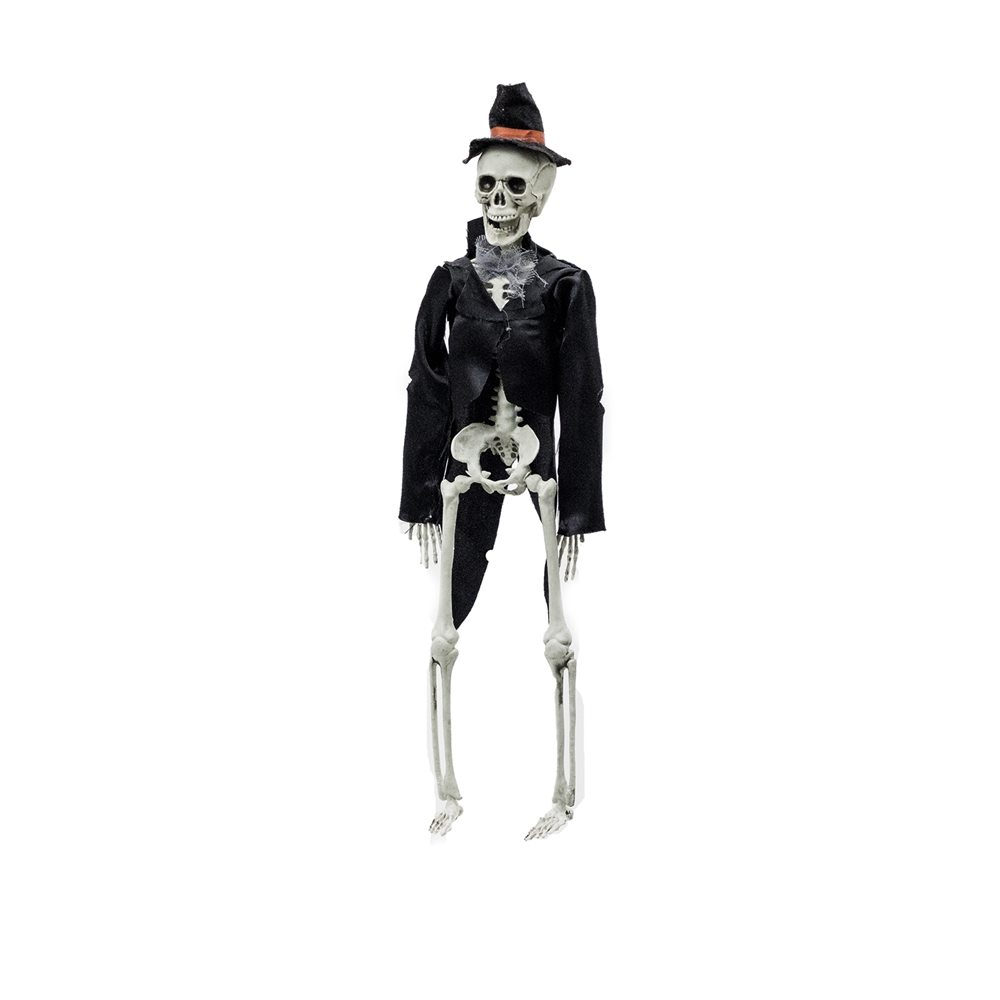 Picture of Gent Skeleton Prop
