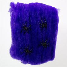 Picture of Purple Spiderweb