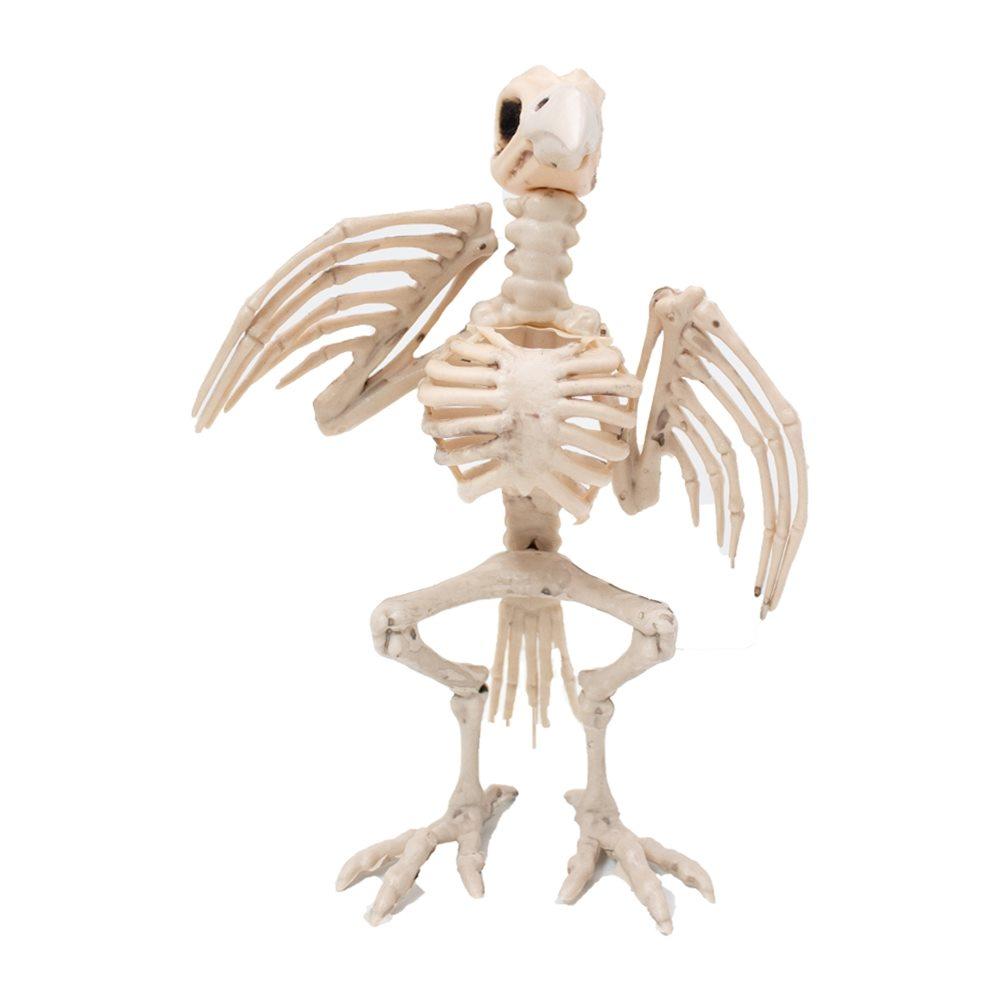 Picture of White Skeleton Crow